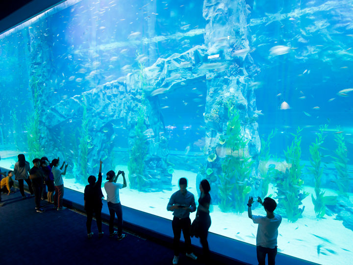 Lotte World Aquarium
