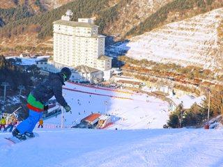 春川伊利希安度假村滑雪场一日游